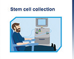 stem-cell-collection