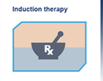 myeloma induction therapy